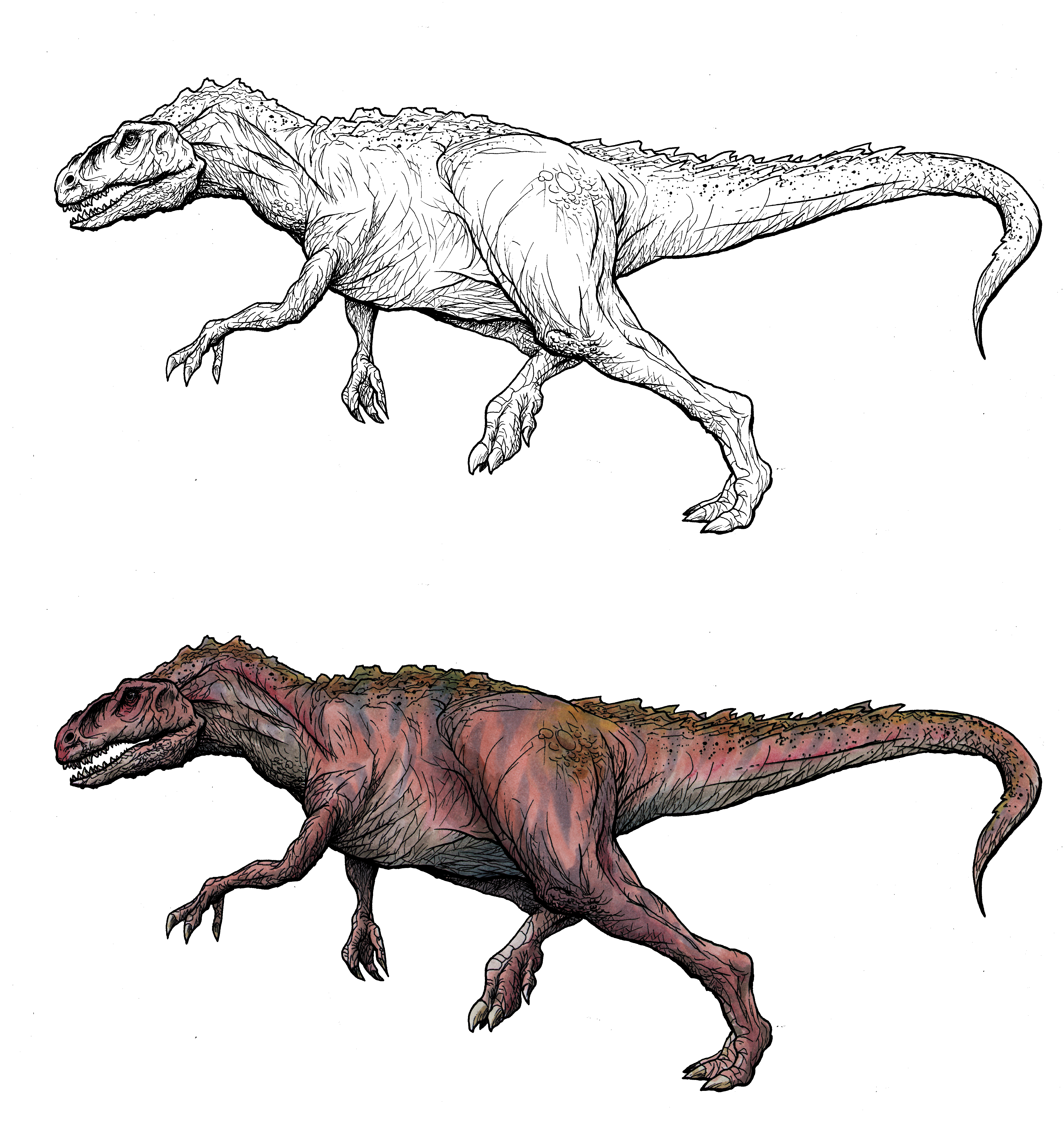 Love Drawing Dinosaurs Pictures