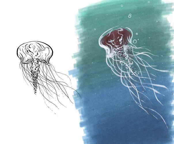 color_jellyfish